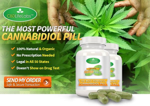 Why Should Medical Marijuana Be Legalized?